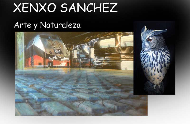 Arte y naturaleza - Xenxo Sánchez