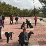 Familia Canina de Tres Cantos