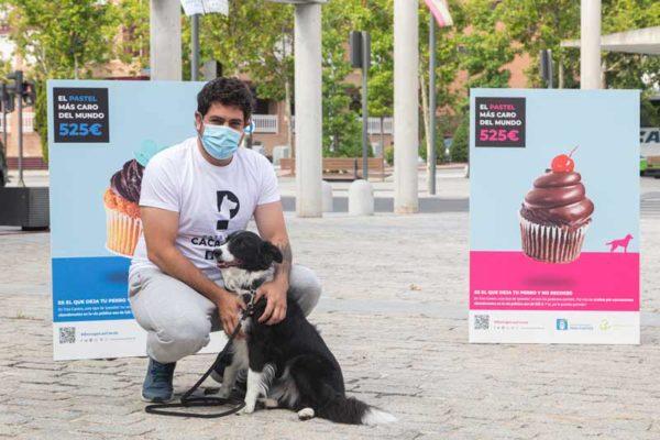 Campaña 'El pastel más caro del mundo' en Tres Cantos